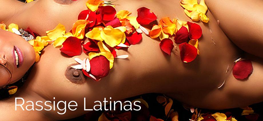 rassige Latinas mit prallen Hintern und dicken Titten